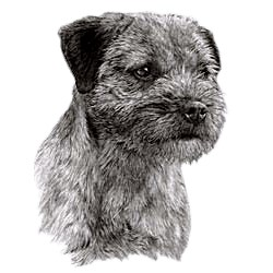 Border Terrier T-Shirt - Eye Catching Detail