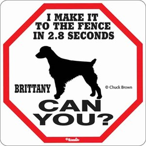Brittany 2.8 Seconds Sign