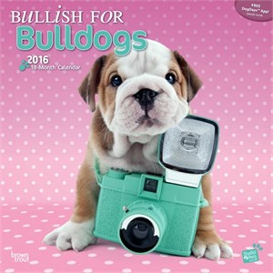 Bullish For Bulldogs By Myrna Calendar 2015