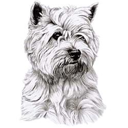 Cairn Terrier T-Shirt - Eye Catching Detail