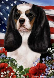 Cavalier King Charles House Flag Tri