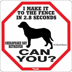 Chesapeake Bay 2.8 Seconds Sign