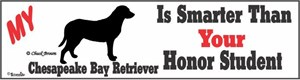 Chesapeake Bay Retriever Bumper Sticker Honor Student