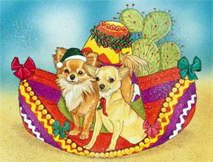 Chihuahua Christmas Cards Long Hair And Short