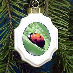 Ladybug Christmas Ornament Porcelain