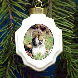 Squirrel Christmas Ornament Porcelain