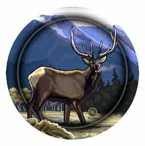Elk Drink Coasters