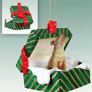 Coyote Gift Box Christmas Ornament