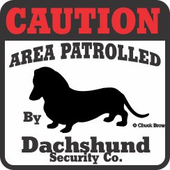 Dachshund Bumper Sticker Caution