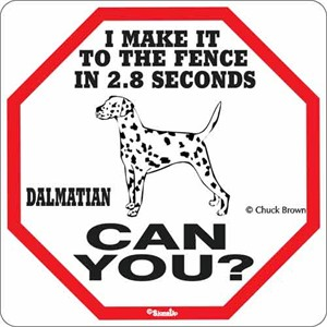 Dalmatian 2.8 Seconds Sign