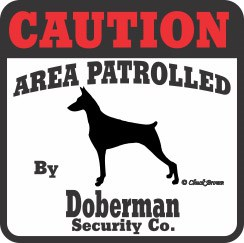 Doberman Pinscher Bumper Sticker Caution