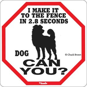 Dog 2.8 Seconds Sign