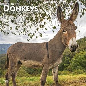 Donkey Calendar 2015