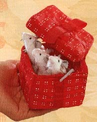Mice in Red Box Puppet