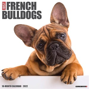 Frenchies Calendar 2015