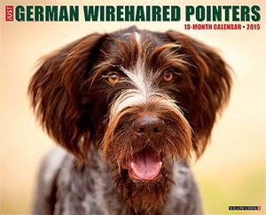 German Wirehaired Pointers Calendar 2015
