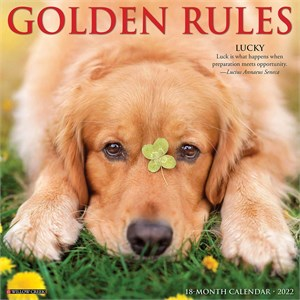 Golden Rules Calendar 2014