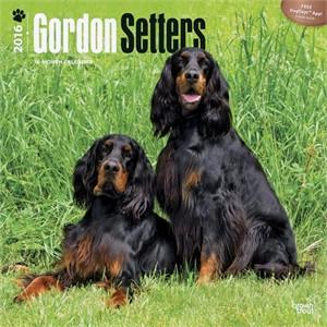 Gordon Setters Calendar 2016