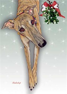 Greyhound Christmas Cards Brindle