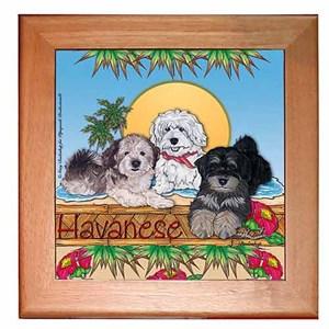 Havanese Trivet