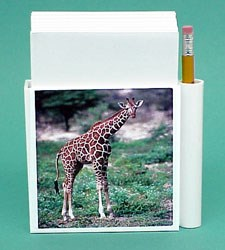Giraffe Hold-a-Note