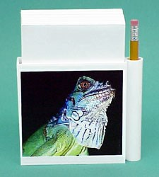 Iguana Hold-a-Note
