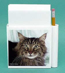 Maine Coon Cat Hold-a-Note