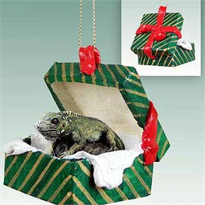 Iguana Gift Box Christmas Ornament