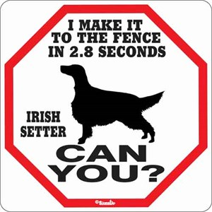 Irish Setter 2.8 Seconds Sign