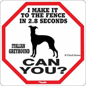 Italian Greyhound 2.8 Seconds Sign