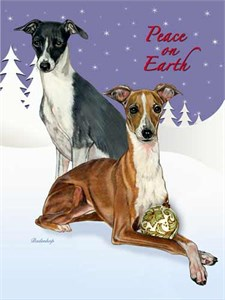 Italian Greyhound Christmas Cards