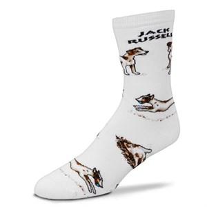 Jack Russell Poses Socks