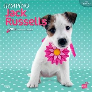 Jumping Jack Russells Calendar 2015