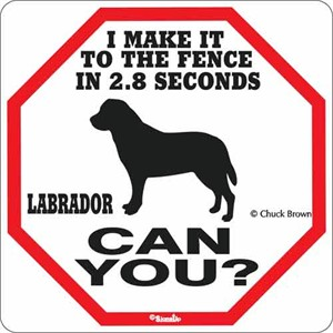 Labrador 2.8 Seconds Sign