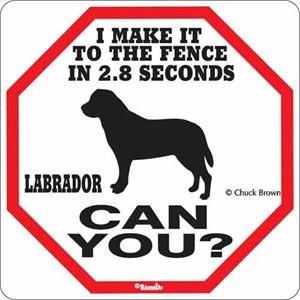 Labrador 2.8 Seconds Sign