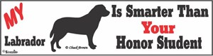 Labrador Bumper Sticker Honor Student