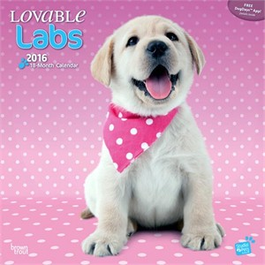 Lovable Labs By Myrna Calendar 2015