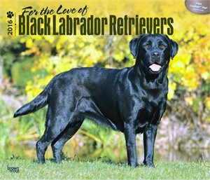 For the Love of Black Labrador Retrievers Deluxe Calendar 2016
