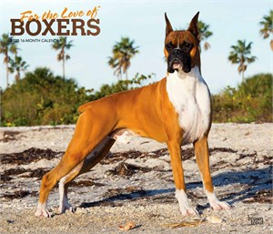For the Love of Boxers Deluxe Calendar 2015