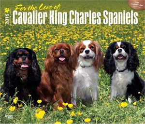 For the Love of Cavalier King Charles Deluxe Calendar 2015