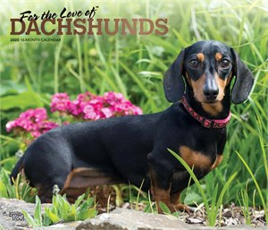 For the Love of Dachshunds Deluxe Calendar 2015