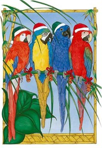 Macaw Christmas Cards