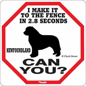 Newfoundland 2.8 Seconds Sign