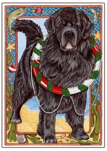 Newfoundland Christmas Cards