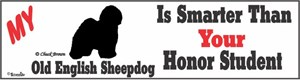 Old English Sheepdog Bumper Sticker Honor Student