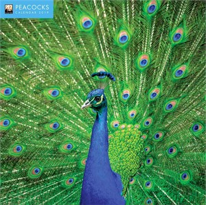 Peacocks Calendar 2014