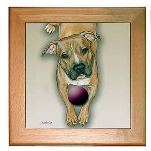Pit Bull Terrier Trivet