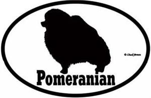 Pomeranian Bumper Sticker Euro