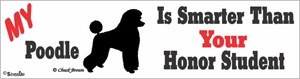 Poodle Bumper Sticker Honor Student