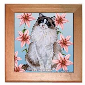 Ragdoll Cat Trivet
